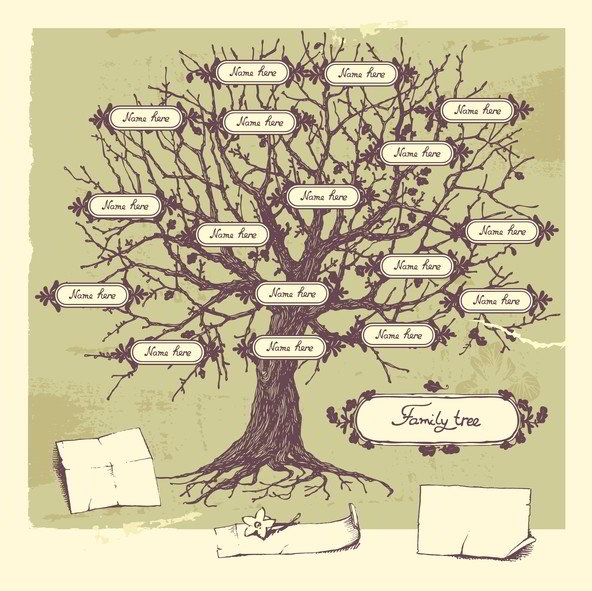 Search your family tree for free and get help finding family tree connections.